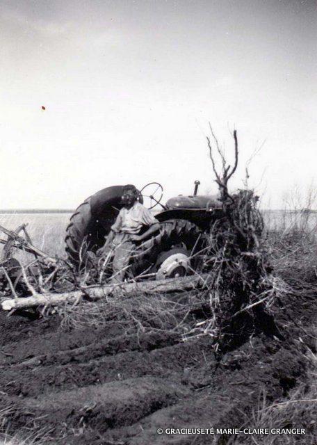 Hercule Granger sur sa terre, à Fatima, en 1949.